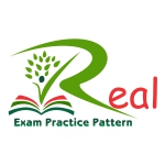 Real Exam Pattern